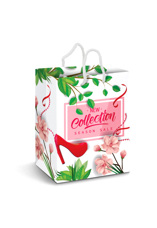 Large Laminated Paper Carry Bag - Full Colour  Image #1
