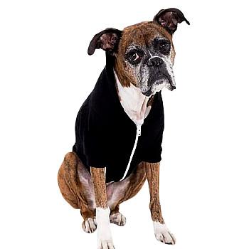 Dog Hood